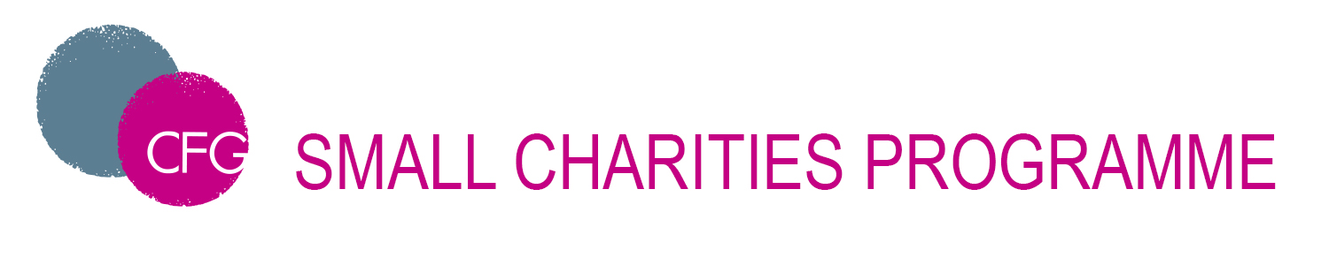 Small Charities Finance Programme